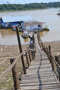 pont de singe bis