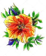 depositphotos_92354298-stock-photo-orange-tropical-exotic-mango-flower