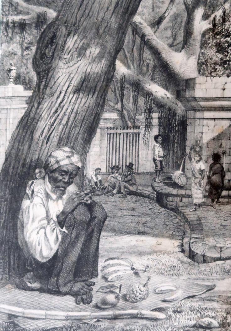 5 bazardier Jardin Etat