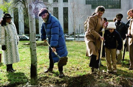 Plantation d'arbres Judiciary Sqaure
